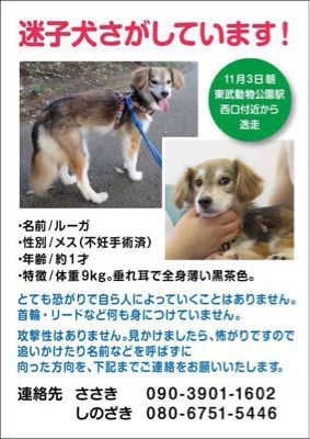 b0086939_20104662.jpg
