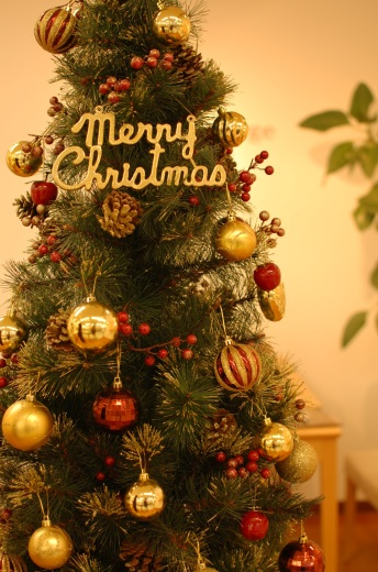 CHRISTMAS!!_c0346851_19071092.jpg