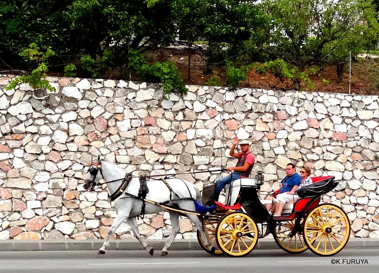 スペイン旅行記 15   白い村  ミハス_a0092659_23534239.jpg