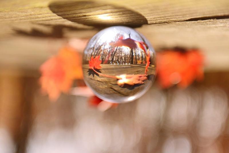 f0300369_14593788.jpg
