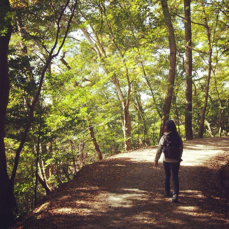 奈良の若草山へハイキング_b0277377_1121493.jpg