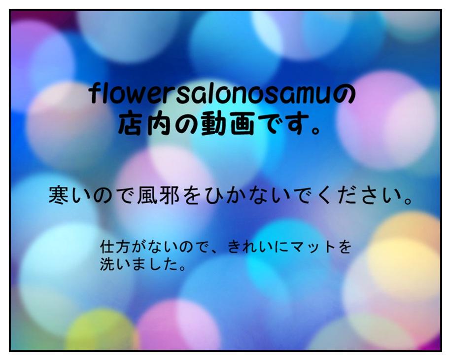 ✿難波(なんば)の花屋の店内YouTube。✿flowersalonosamu_b0344880_17025610.jpg