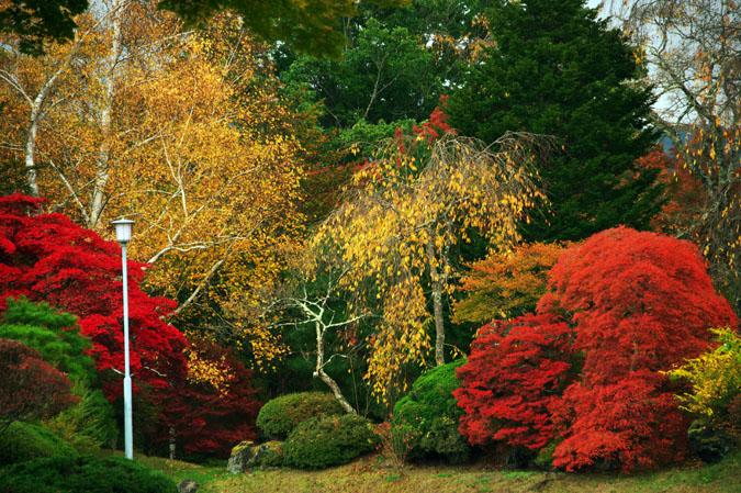 河口湖富士ビューホテルの庭園1_a0263109_14202151.jpg