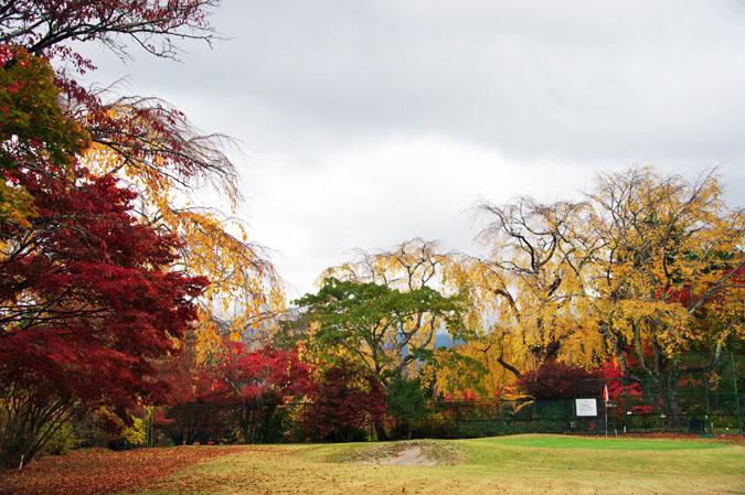 河口湖富士ビューホテルの庭園1_a0263109_14202864.jpg