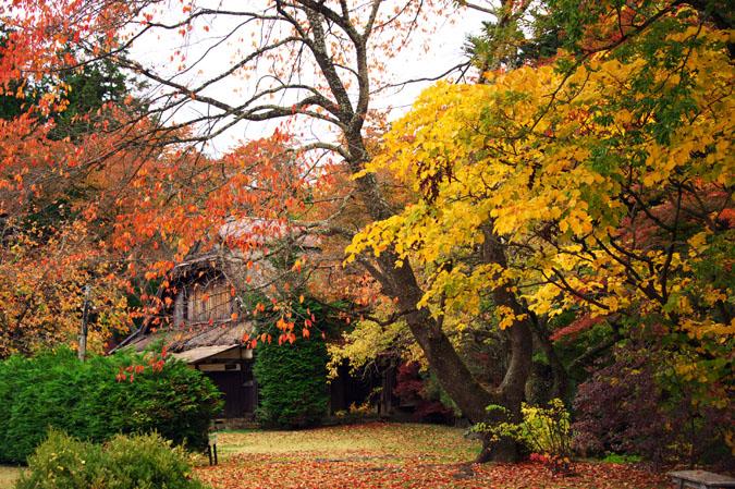 河口湖富士ビューホテルの庭園1_a0263109_14203080.jpg