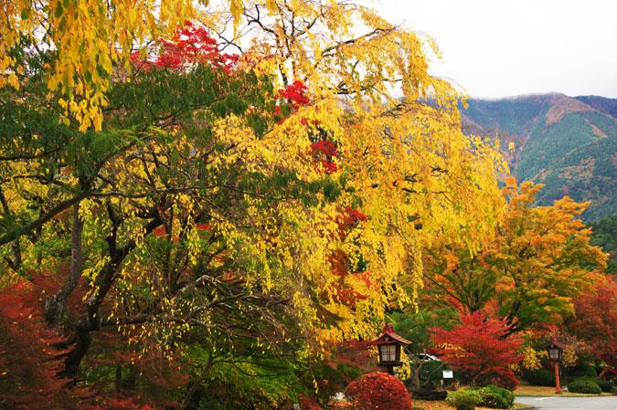 河口湖富士ビューホテルの庭園1_a0263109_14225489.jpg