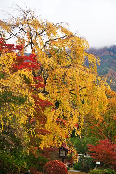 河口湖富士ビューホテルの庭園1_a0263109_14231960.jpg