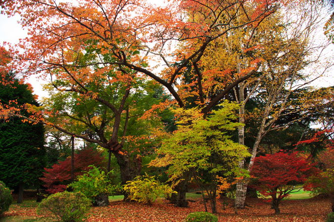 河口湖富士ビューホテルの庭園1_a0263109_1423633.jpg