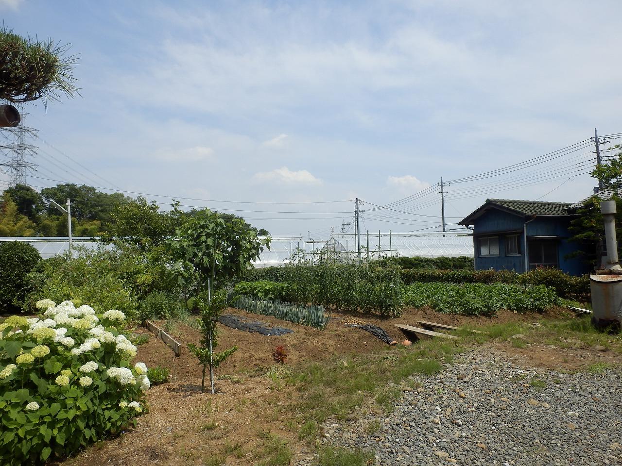 (仮)尾崎町の家_d0013610_17305844.jpg