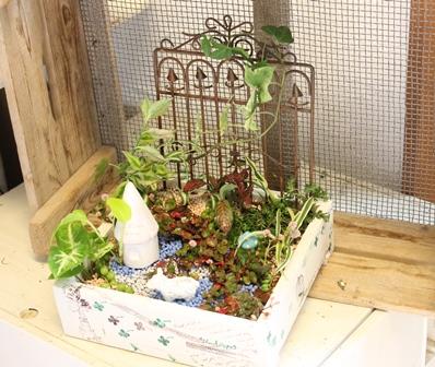 11月のレッスン~Mini Garden Lesson_d0227610_20143625.jpg