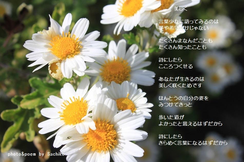 f0351844_16471676.jpg