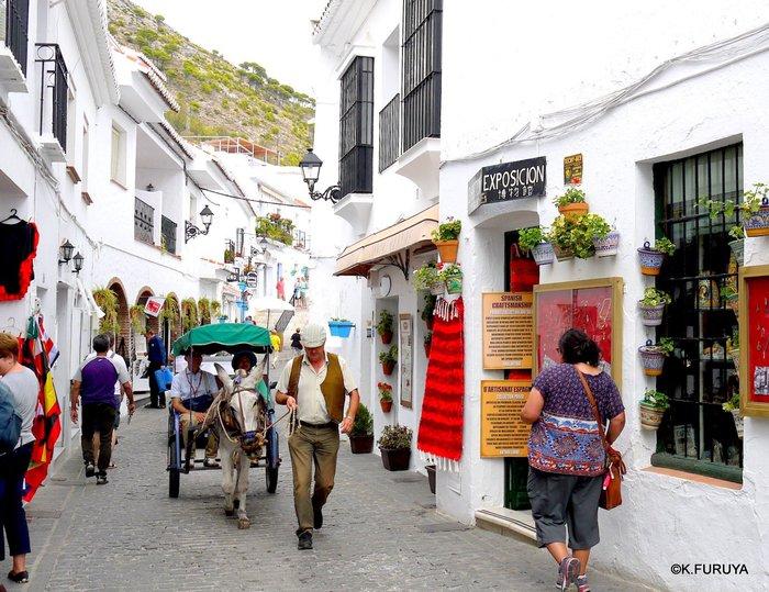 スペイン旅行記 15   白い村  ミハス_a0092659_15101521.jpg