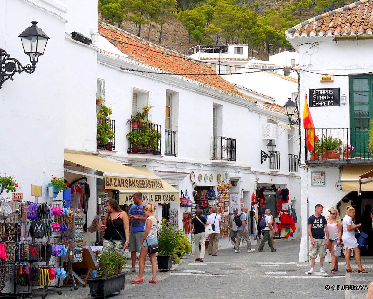 スペイン旅行記 15   白い村  ミハス_a0092659_153012100.jpg