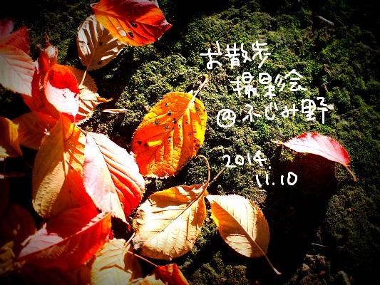 b0092580_324598.jpg
