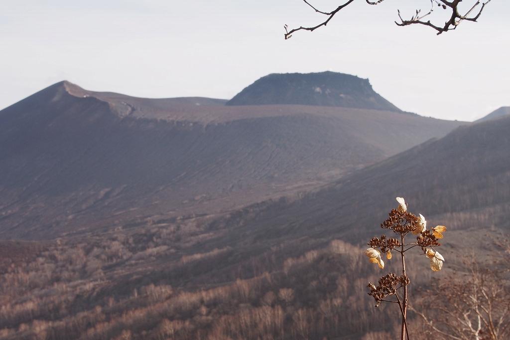 風不死岳と樽前山、11月11日-風不死岳編-_f0138096_21114534.jpg