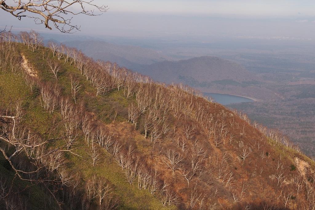 風不死岳と樽前山、11月11日-風不死岳編-_f0138096_2112921.jpg