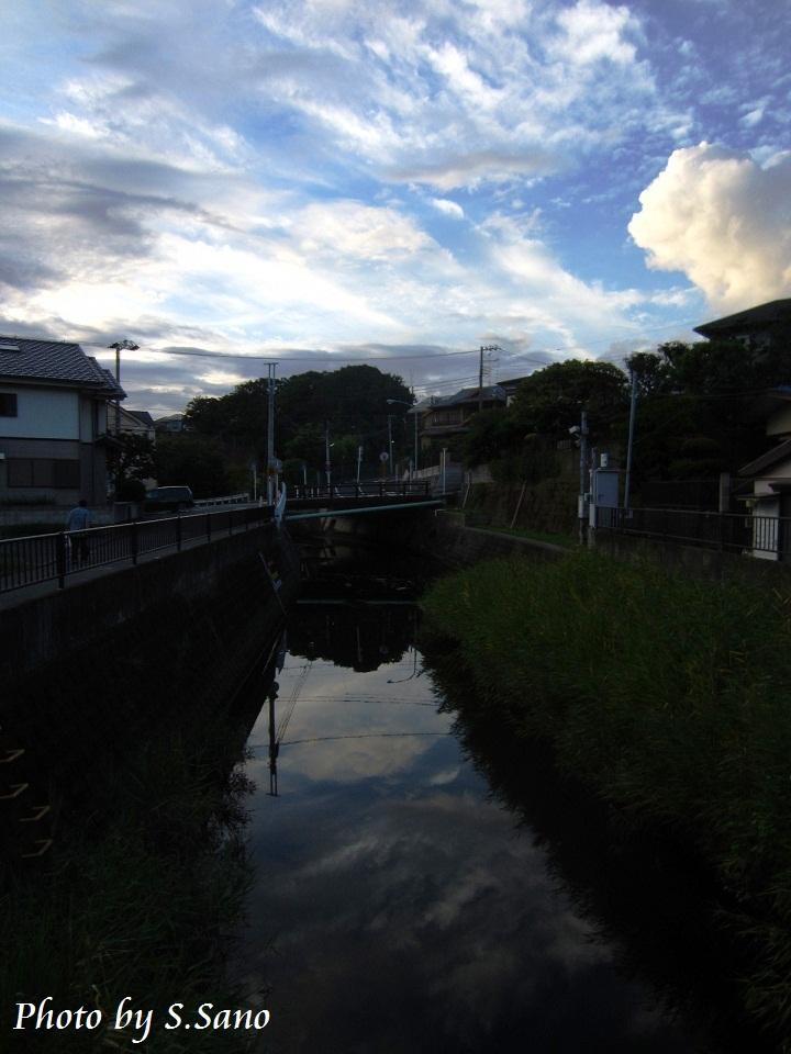 秋の侍従川_b0348205_21450562.jpg