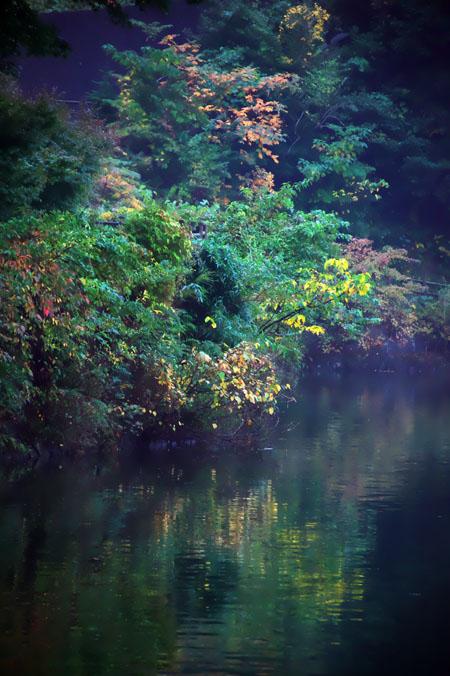 伊豆高原 一碧湖の紅葉1_a0263109_20394416.jpg