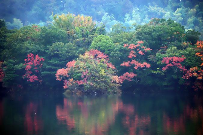 伊豆高原 一碧湖の紅葉1_a0263109_20395067.jpg