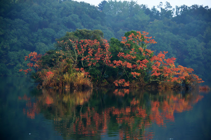 伊豆高原 一碧湖の紅葉1_a0263109_20395744.jpg