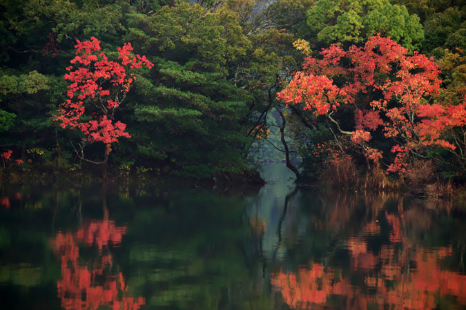 伊豆高原 一碧湖の紅葉1_a0263109_20411593.jpg
