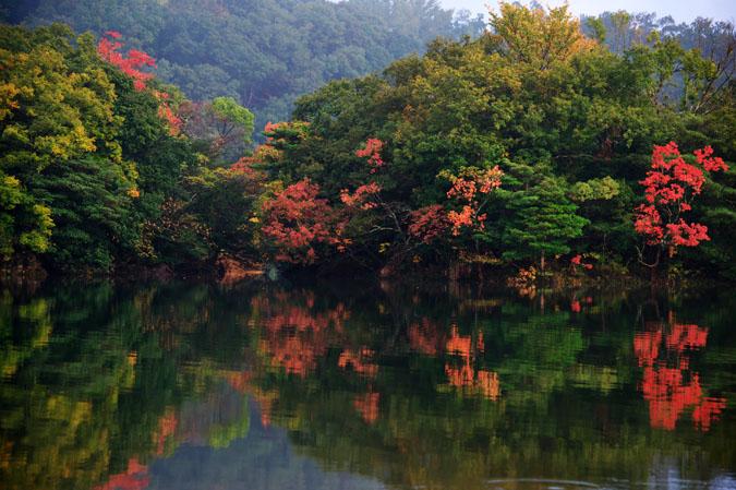 伊豆高原 一碧湖の紅葉1_a0263109_2042033.jpg