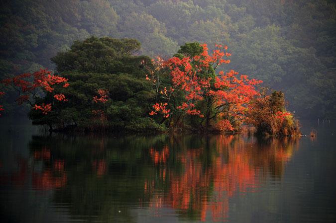 伊豆高原 一碧湖の紅葉1_a0263109_2042375.jpg