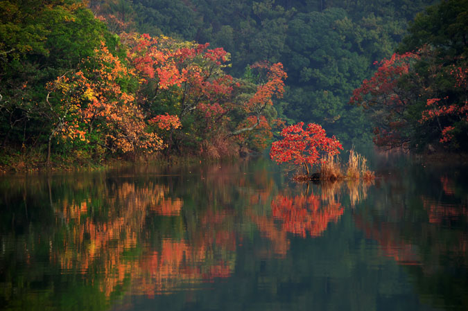 伊豆高原 一碧湖の紅葉1_a0263109_20425246.jpg
