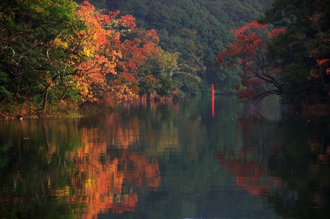 伊豆高原 一碧湖の紅葉1_a0263109_20433132.jpg