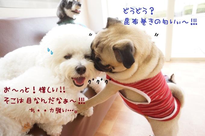 d0220513_1521591.jpg
