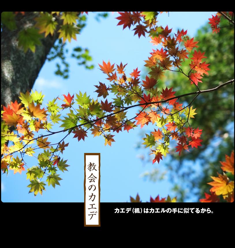 b0344119_22261323.jpg