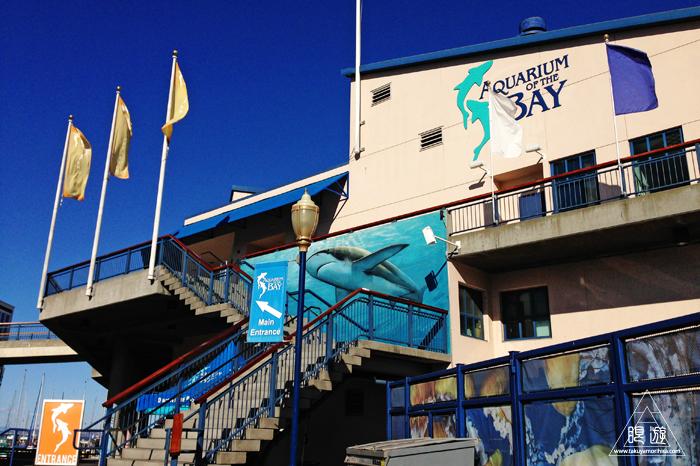 390 Aquarium Of The Bay ~サンフランシスコの水族館~_c0211532_2152655.jpg