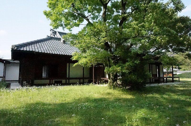 京都御苑の閑院宮邸跡_c0112559_8565729.jpg