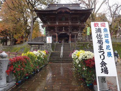 びしゃもん市  大和芸能祭   「ねこかき」_f0019487_0162258.jpg