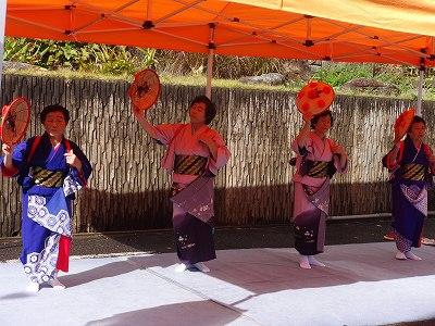 びしゃもん市  大和芸能祭   「ねこかき」_f0019487_0212535.jpg