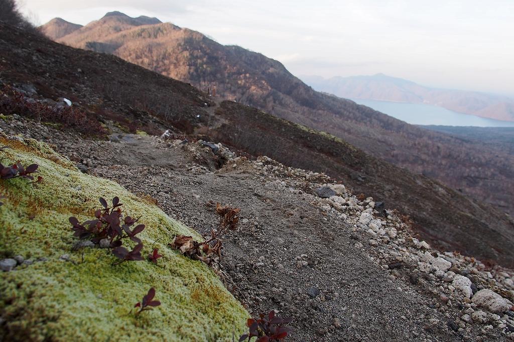 風不死岳と樽前山、11月11日-樽前山編-_f0138096_1359732.jpg