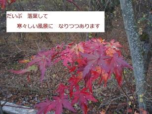b0200310_659349.jpg