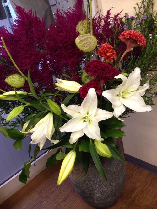 今週のお花🌼_a0200423_11111736.jpg