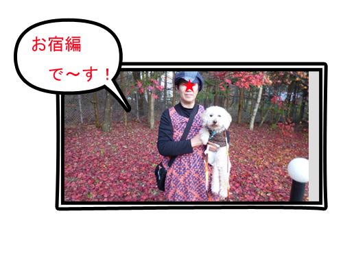 c0343936_23066.jpg
