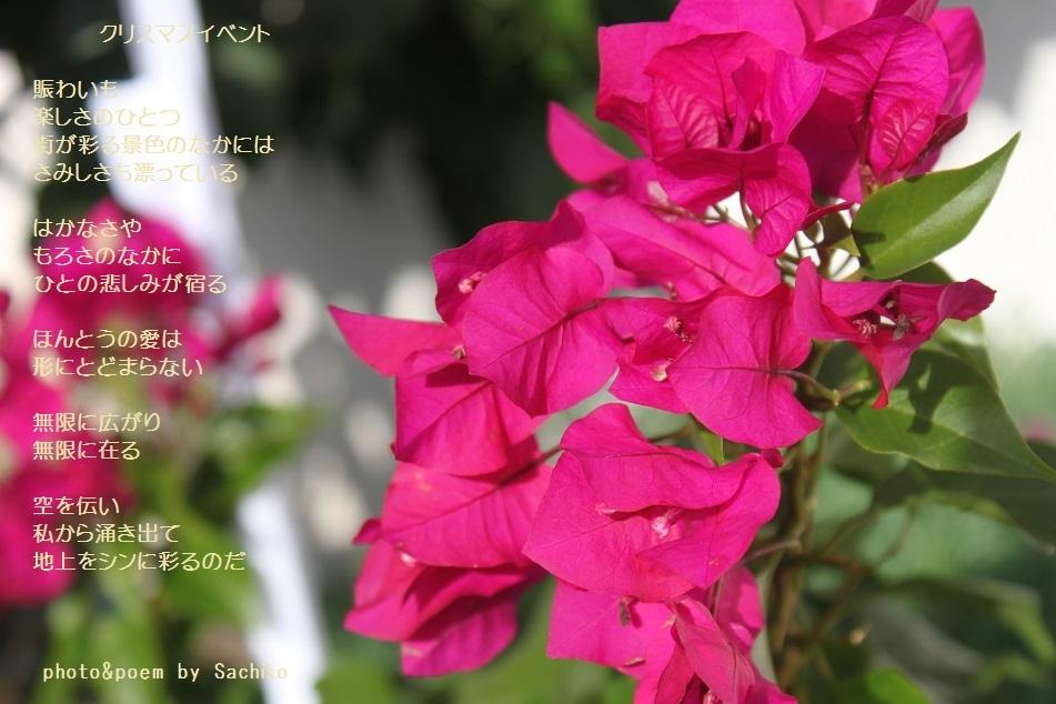 f0351844_16060276.jpg