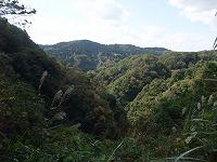 倶利伽羅県定公園周辺紅葉情報_c0208355_18101287.jpg