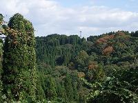 倶利伽羅県定公園周辺紅葉情報_c0208355_18104832.jpg