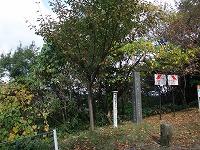倶利伽羅県定公園周辺紅葉情報_c0208355_1811514.jpg