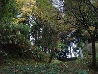 倶利伽羅県定公園周辺紅葉情報_c0208355_1811723.jpg