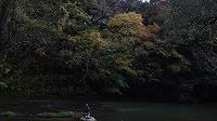 宮島峡紅葉情報_c0208355_18527100.jpg