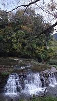 宮島峡紅葉情報_c0208355_18531750.jpg