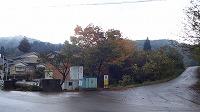 宮島峡紅葉情報_c0208355_1921632.jpg