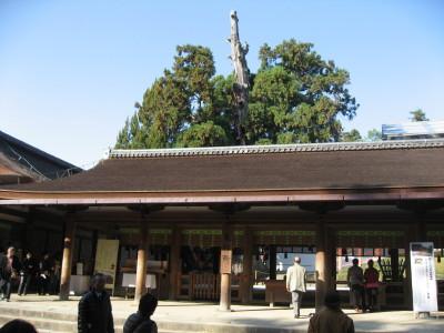 奈良の清酒春鹿_f0006356_11594294.jpg
