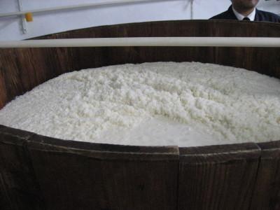 奈良の清酒春鹿_f0006356_1203867.jpg