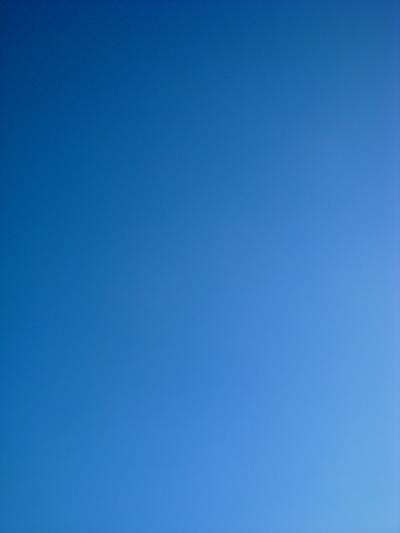 青空リースレッスン♪_a0229658_2203953.jpg